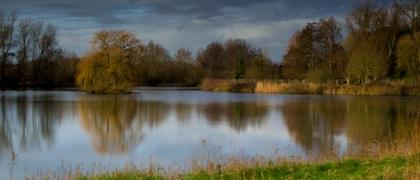 Lackford Lakes